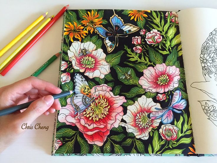 "Colorvscolour: ""The Peony"" - Colored Pencils Coloring (Part 3) from Daydreams by Hanna Karlzon; time 25:42; Mar 11, 2016"