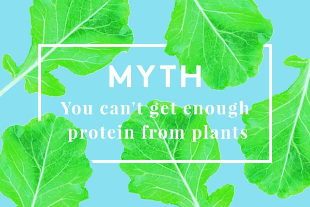 10 Vegetarian Myths Busted | Refinery29 | It's amazing how many people believe these myths.