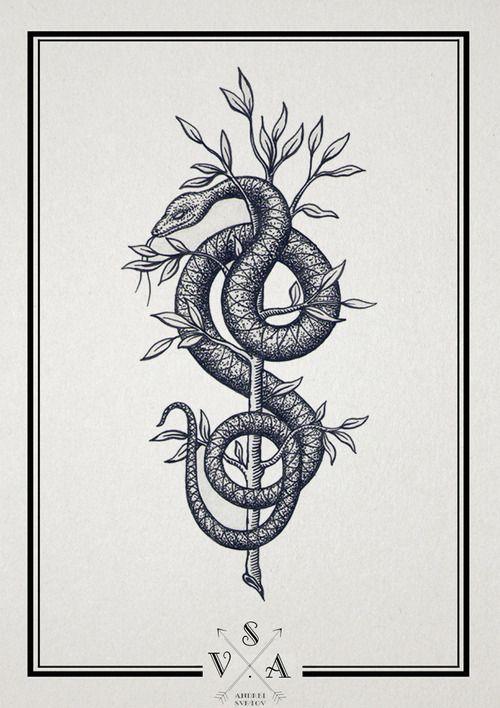 SV.A - snake
