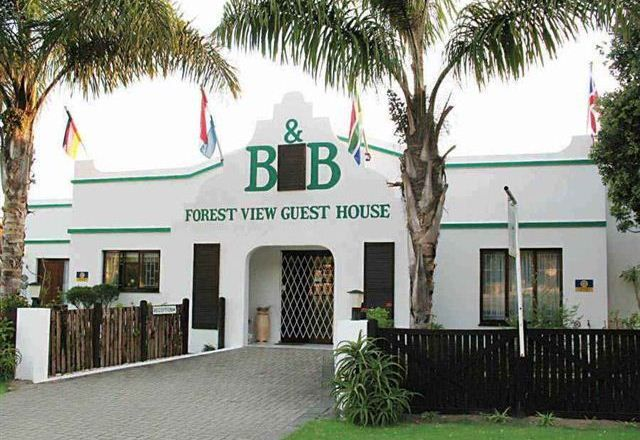 Forest View Guest House and B