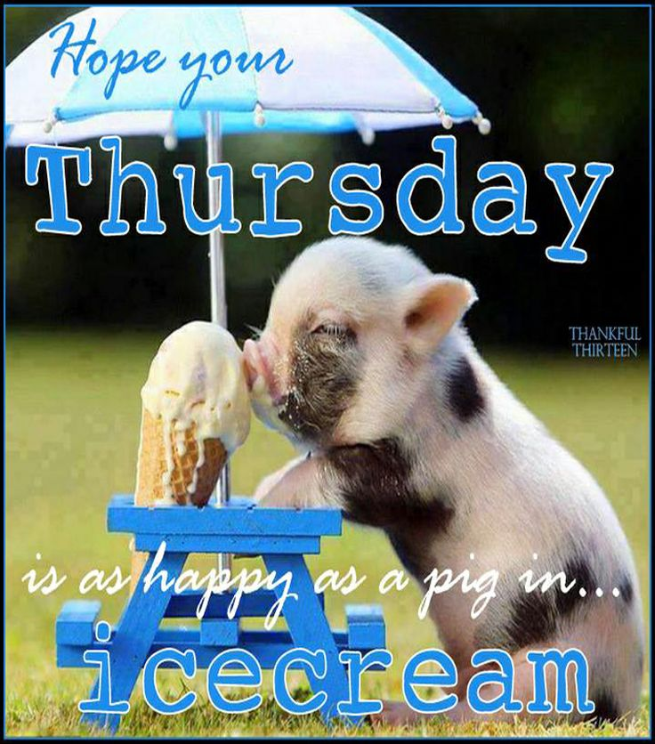 Positive Thoughts For Thursday, Nov 2, 2017 - Blogs & Forums