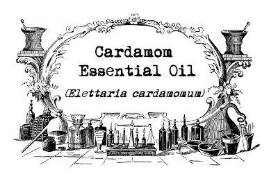 Fresh-Picked Beauty: Cardamom Essential Oil