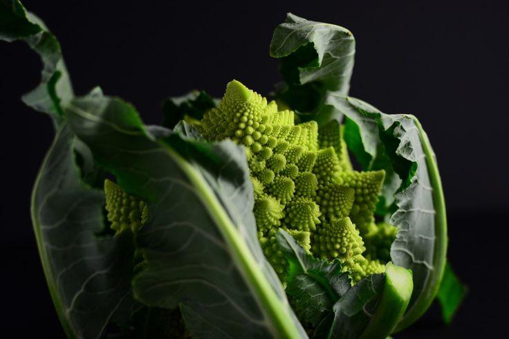 broccolo romano. roman broccoli.