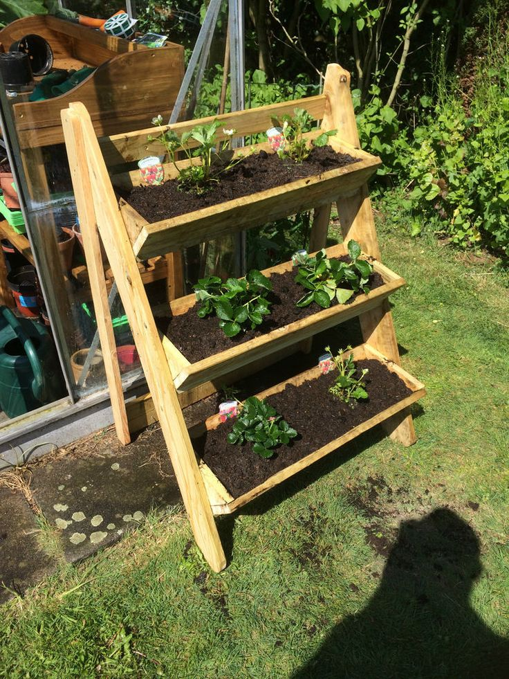 Wooden plant stand 3 tier trough garden strawberry herb ...
