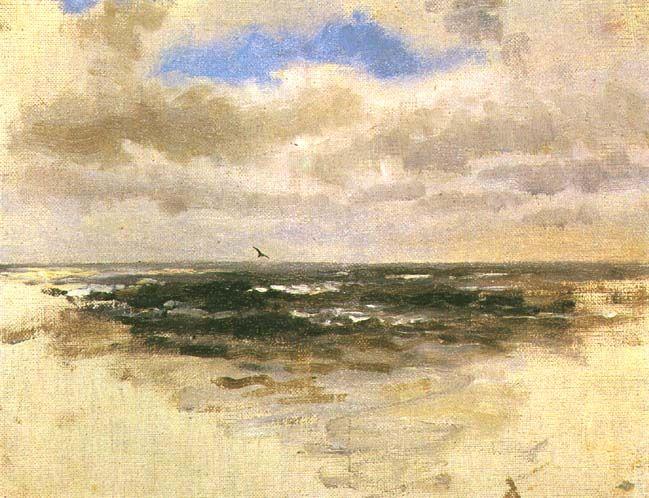 Pejzaż morski z lecącym ptakiem