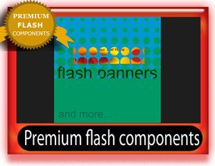 Premium flash banners template
