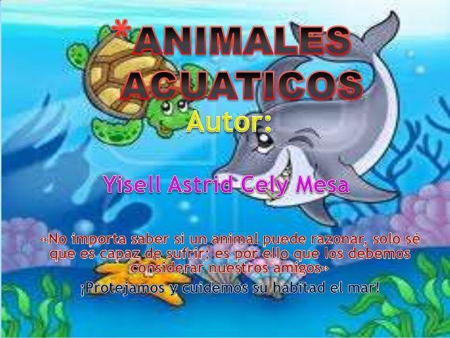 Animales Acuáticos Para Niños Animales Acuáticos Caracteristicas De Los Animales Animales