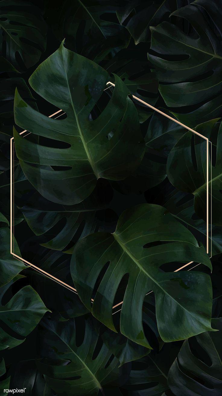 Download premium vector of Hexagon golden frame on…