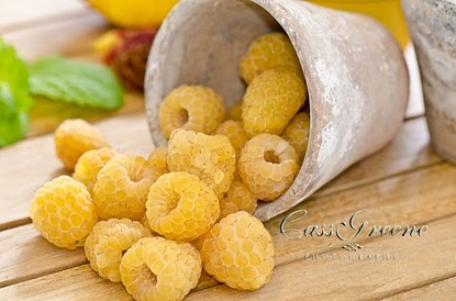 Yellow Rasberries