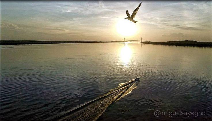 Paciencia Libertad Pasión Vida y Alegría enmarcadas en esta imagen . Feliz noche #drone #djiglobal #dji #inspire #pictures #MIVENEZUELA #historia #tradicionbolivarence #IGERSGUAYANA #IGERSVENEZUELA #dji #inspire #aereo #angostura #paseoorinoco #elnacionalweb #eluniversal #rioorinoco #venezuela #venabolivar #worldvenezuela #world