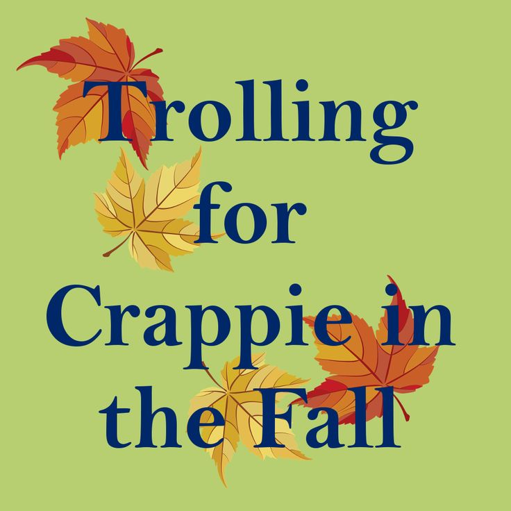 Trolling for Crappie in the Fall explains why fall is great for crappie fishing, how to troll for crappie in the fall and what is the best crappie rig trolling