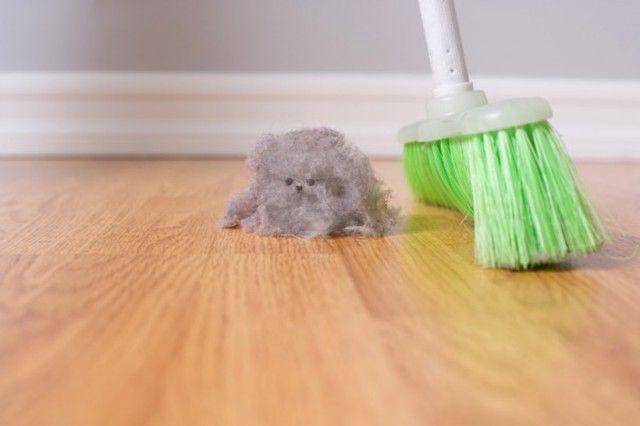 4 способа сократить количество пыли в доме 0