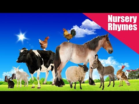 Learn Animals Names and Sounds - Learn Animals for Children - Farm Animals for Kids - Educative - YouTube
