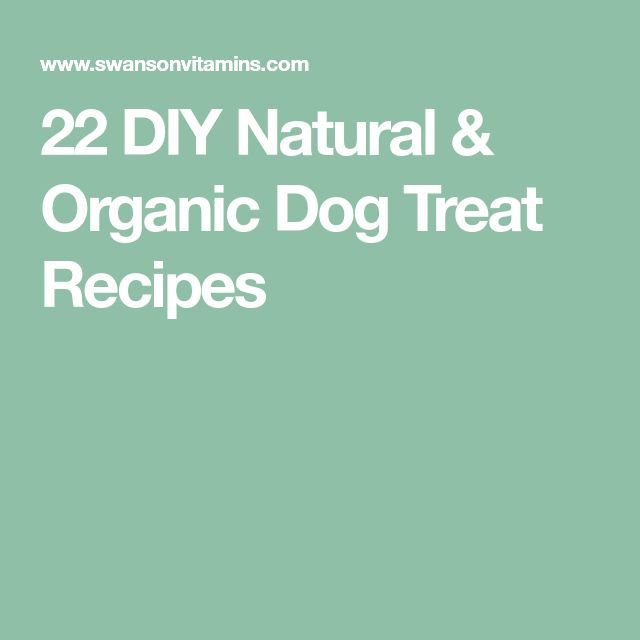 22 DIY Natural & Organic Dog Treat Recipes