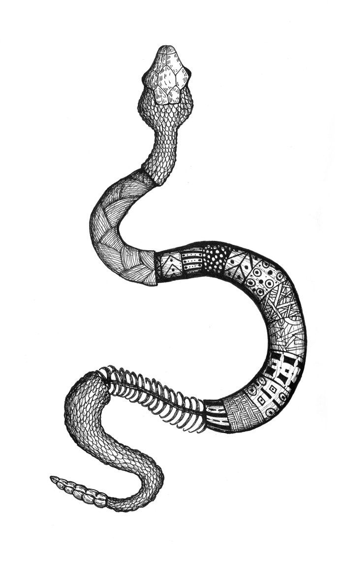 zentangle snake - Google Search