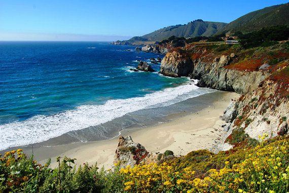 Big Sur Beach- California Coast- Wildflowers on Beach-Fine Art Photography-8X10