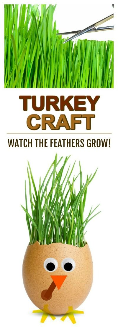 FUN KID PROJECT: Grow your own turkey feathers and then cut & style them! (Turkey planter craft for kids) #turkeycrafts #kidscrafts #thanksgivingcrafts