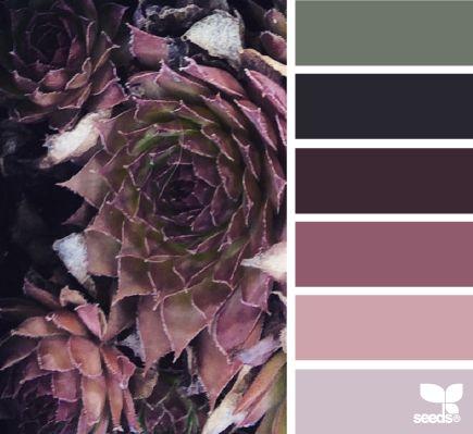 succulent hues - voor meer kleur inspiratie kijk ook eens op http://www.wonenonline.nl/interieur-inrichten/kleuren-trends/