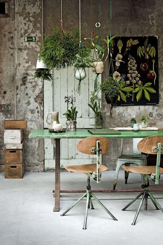 Pflanzen, unverputzte Wände und Schulmöbel | | Ideen für das Esszimmer | Wohnungseinrichtung | Esszimmer einrichten