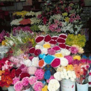 TOKO BUNGA JAKARTA: STANDING FLOWERS