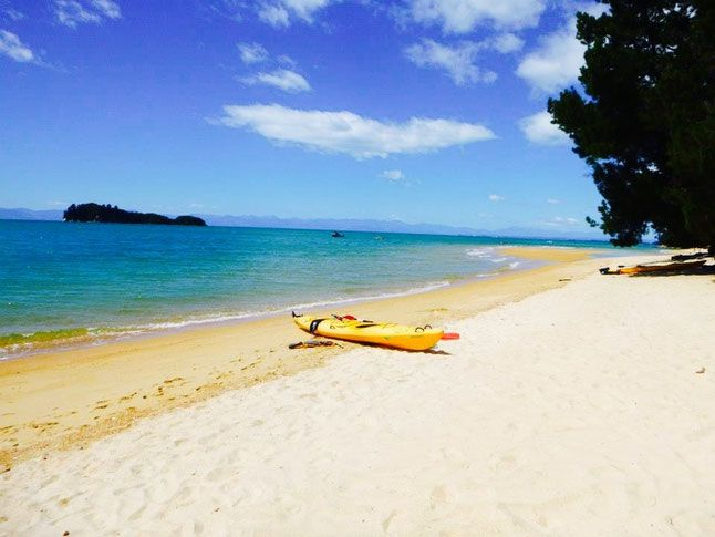 Abel Tasman! Top 11 Must See Places in New Zealand!