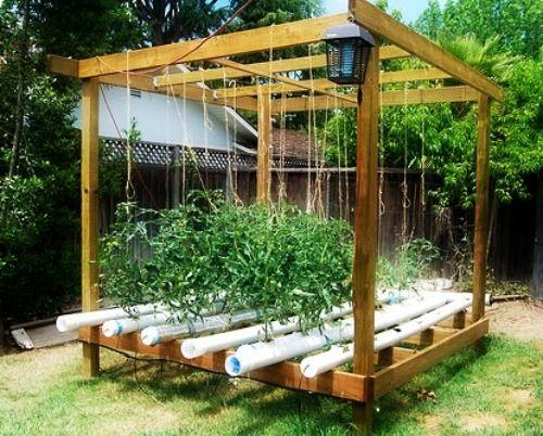 backyard hydroponic growing gazebo