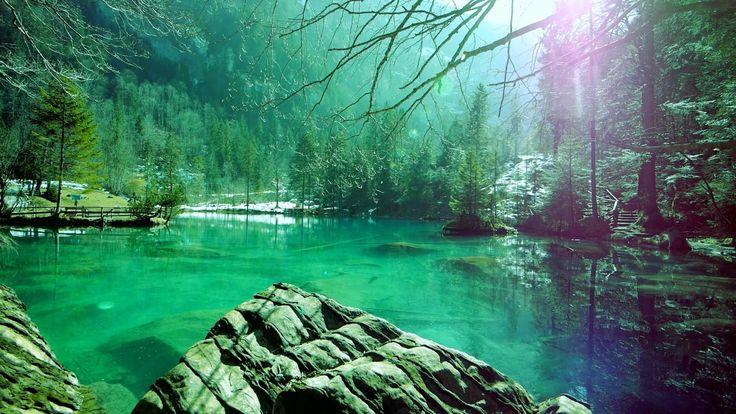 Musique Relaxante: Sommeil, Soulagement du Stress, Méditation, Belle Nat...