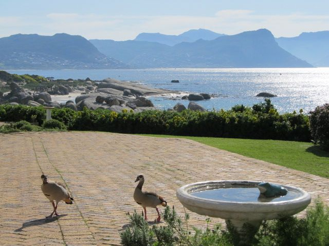 Self catering accommodation, Simonstown, Cape Town   Beautiful views at Bosky Dell  http://www.pinterest.com/capepointroute/bosky-dell/