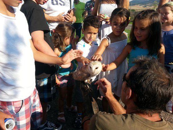 Parque Zoológico Riojanatura, Santo Domingo de la Calzada: Consulta 110 opiniones, artículos, y 93 fotos de Parque Zoológico Riojanatura, clasificada en TripAdvisor en el N.°1 de 5 atracciones en Santo Domingo de la Calzada.