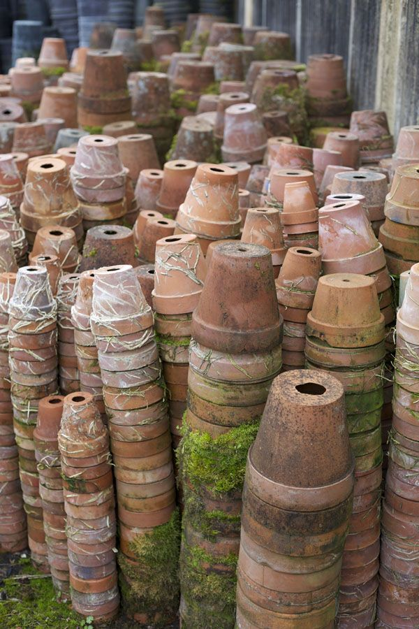 terracotta pots = lots and lots of terracotta pots