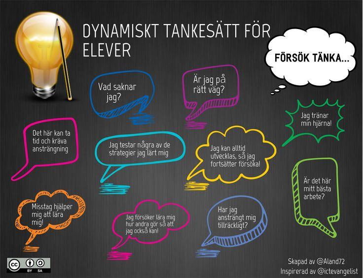 Egna lärarreflektioner kring statiskt och dynamiskt tankesätt efter läsningen av Dwecks Mindset   Min undervisning