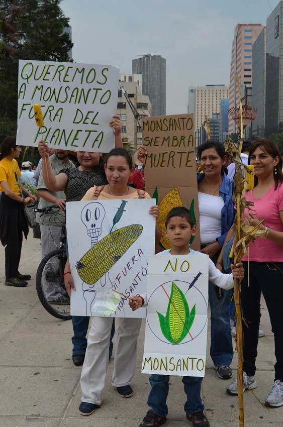 Mexico Celebrates World Day Against Monsanto