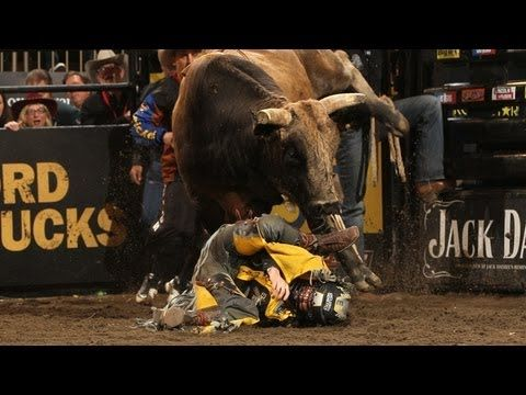 18 best images about pbr wrecks on pinterest for Bull riding madison square garden
