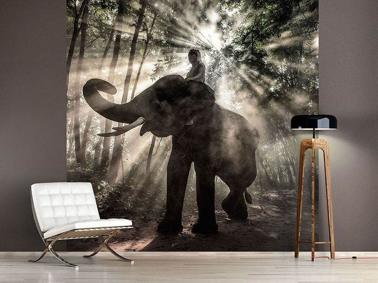foto tapete der elefant fototapeten elefanten pinterest tapeten fotos und elefanten. Black Bedroom Furniture Sets. Home Design Ideas