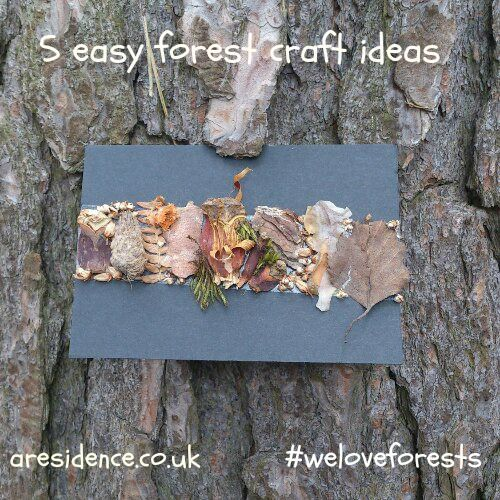 Five Easy Forest Activities: den building, nature picture, forest photographs, make a boggart and make a pen pot from wood