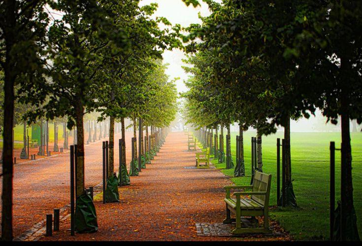 Helsinki Central Park