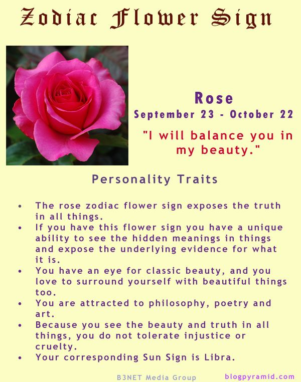 Divine Spark:  #Zodiac Flower Sign ~ Rose September 23 - October 22 (#Libra).