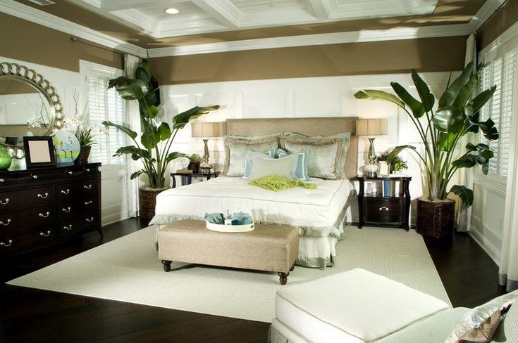dormir la tête au nord, faux plafond design, lit double et plantes vertes en pots design