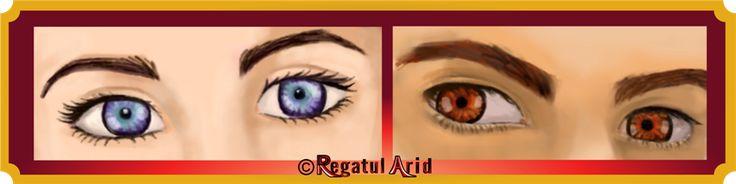 Ce culoare au mai exact ochii Seluniei și ai lui Soris? Cum arată camera principală?