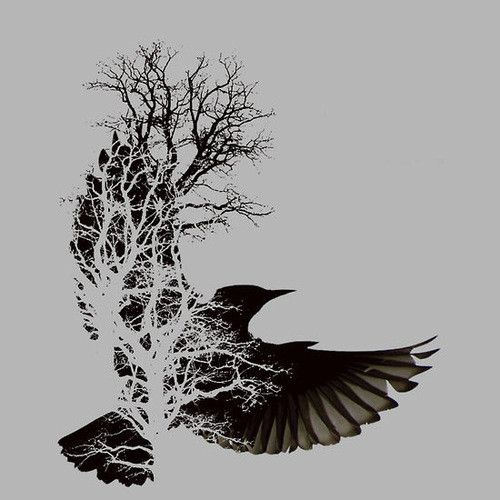 crow in tree silhouette - Google Search