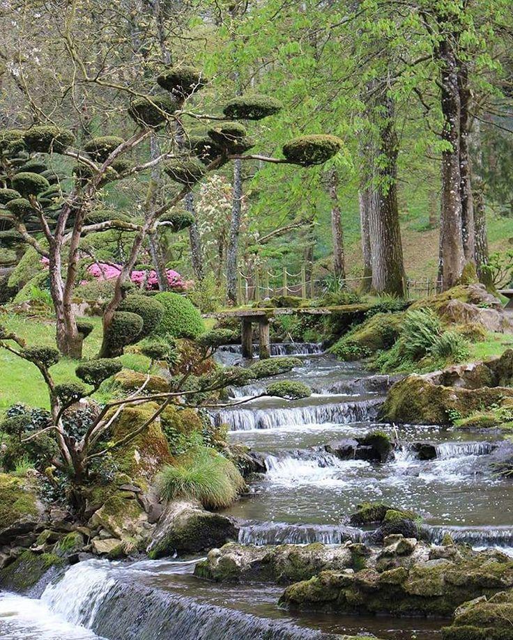 Les 34 meilleures images du tableau parc oriental de for Le jardin oriental de maulevrier
