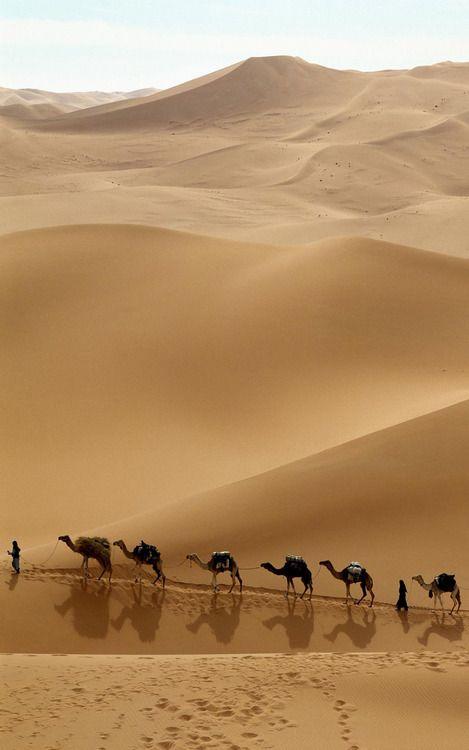 Emmy DE * Desert #Africa