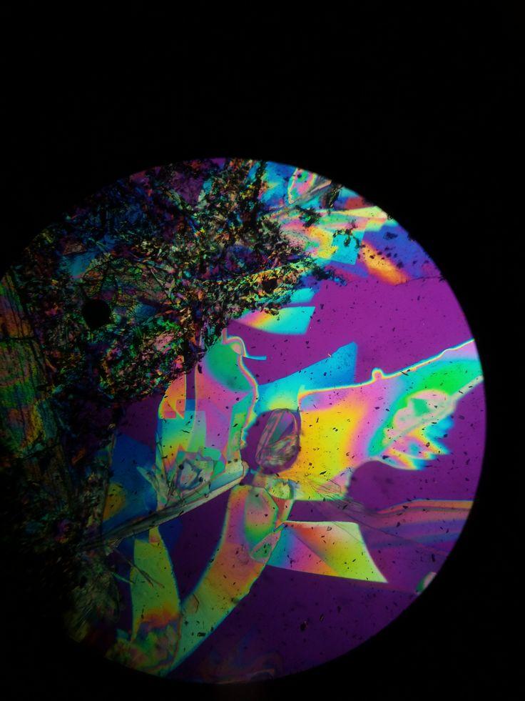 intepretazione 2 : una colomba arcobaleno