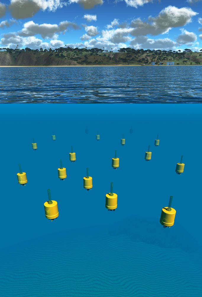 Tiny, Underwater Robots Offer Unprecedented View of World's Oceans