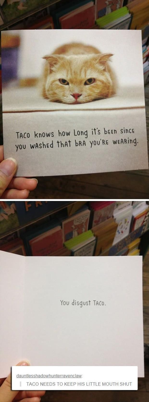 Funny Pictures Of The Day - 52 Pics