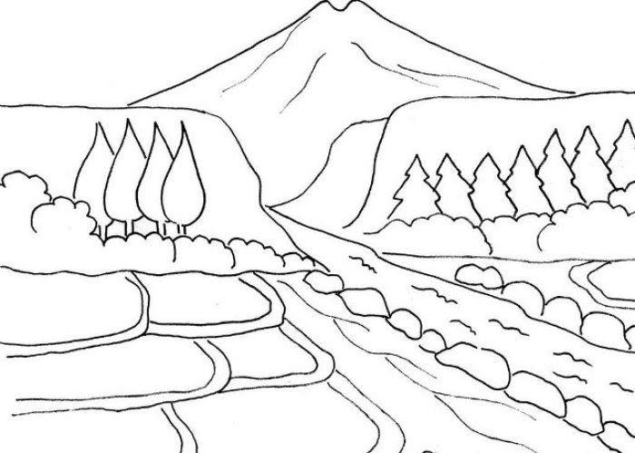34 Gambar Pemandangan Hutan Yang Mudah Digambar Di 2020 Sketsa