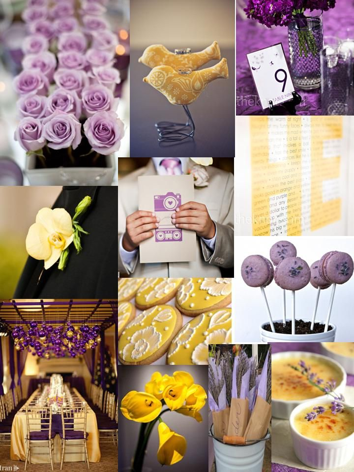 Purple and yellow ideas