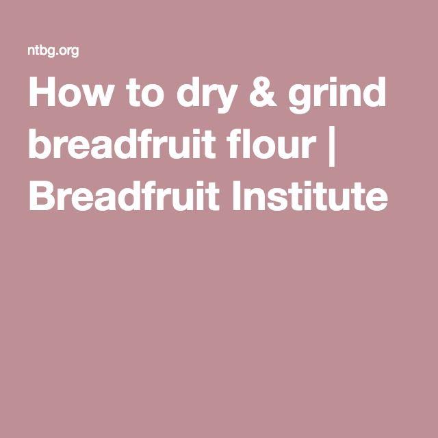 How to dry & grind breadfruit flour | Breadfruit Institute