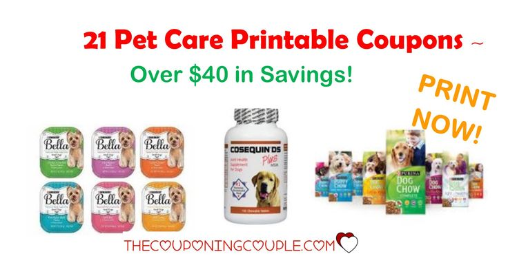 HURRY! Don't miss out on getting these 21 Pet Care Printable Coupons with over $40 in Savings! These won't last long!  Click the link below to get all of the details ► http://www.thecouponingcouple.com/pet-care-printable-coupons/ #Coupons #Couponing #CouponCommunity  Visit us at http://www.thecouponingcouple.com for more great posts!