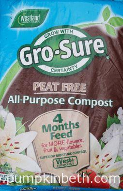 Peat Free Compost Trial 2017, Growing Calendula - Pumpkin Beth